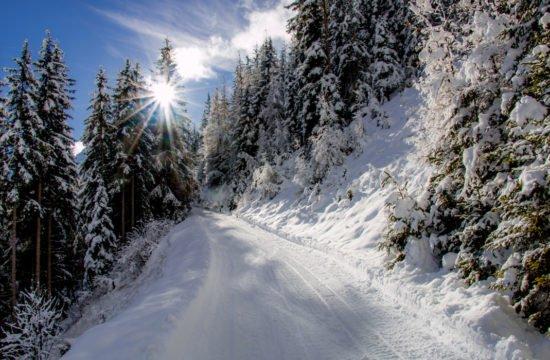 winterlandschaft-gsiesertal-suedtirol5